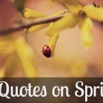 7 Quotes on Spring